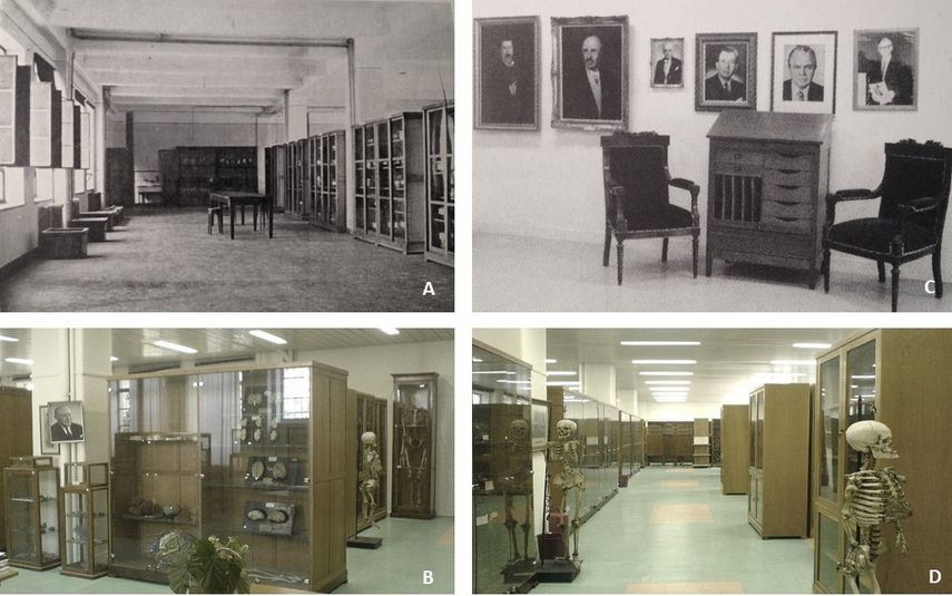 A. The anatomical museum of the Department of Anatomy of National and Kapodistrian University of Athens as it was founded in 1902 and B, C, D. its current views (2012)